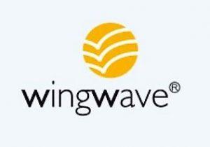 wingwave-Coaching - Heilpraxis für Therapie und Coaching